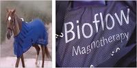 Ecoflow Pf...